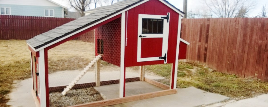 Chicken coops built to withstand colorado wind and snow for Gazebo chicken coop